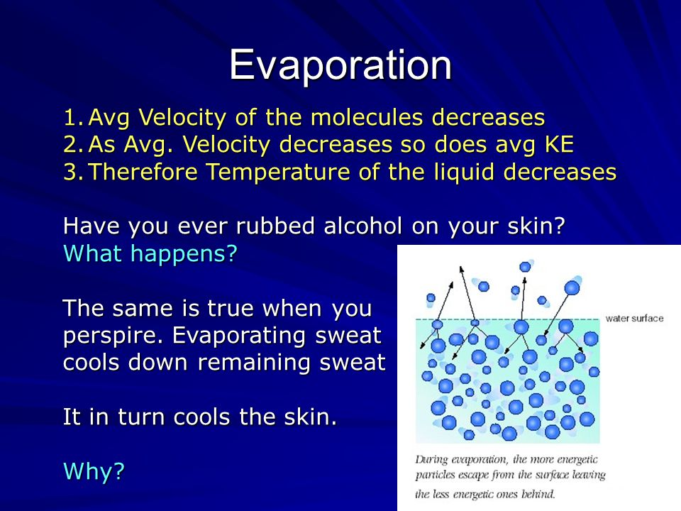 15 Evaporation Those molecules with sufficient KE can overcome the Attractive forces between it's neighbors and therefore Leave the liquid phase.