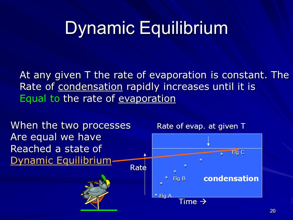 19 Dynamic equilibrium In the closed system some of the gas molecules return To the liquid phase.