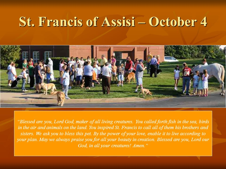 St. Francis of Assisi – October 4 Blessed are you, Lord God, maker of all living creatures.