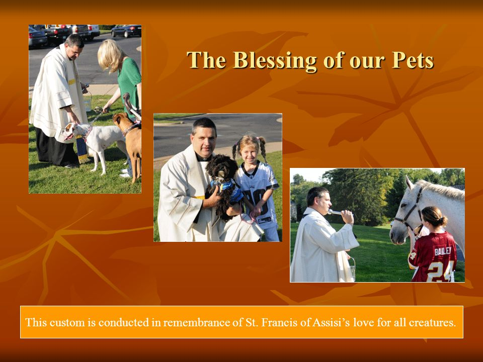 The Blessing of our Pets This custom is conducted in remembrance of St.