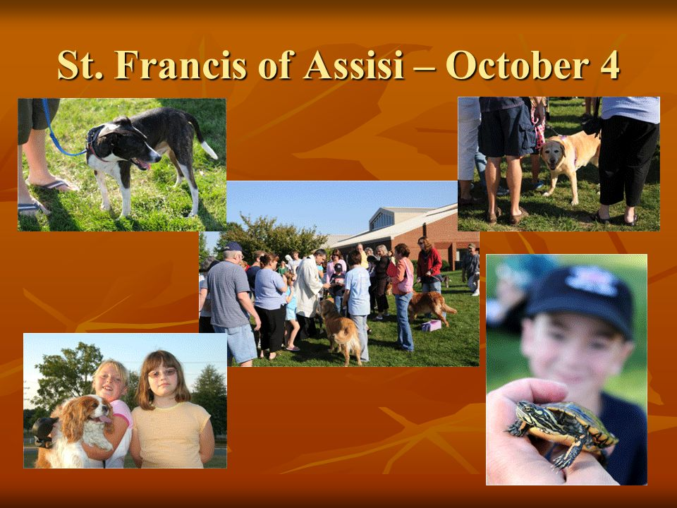 St. Francis of Assisi – October 4