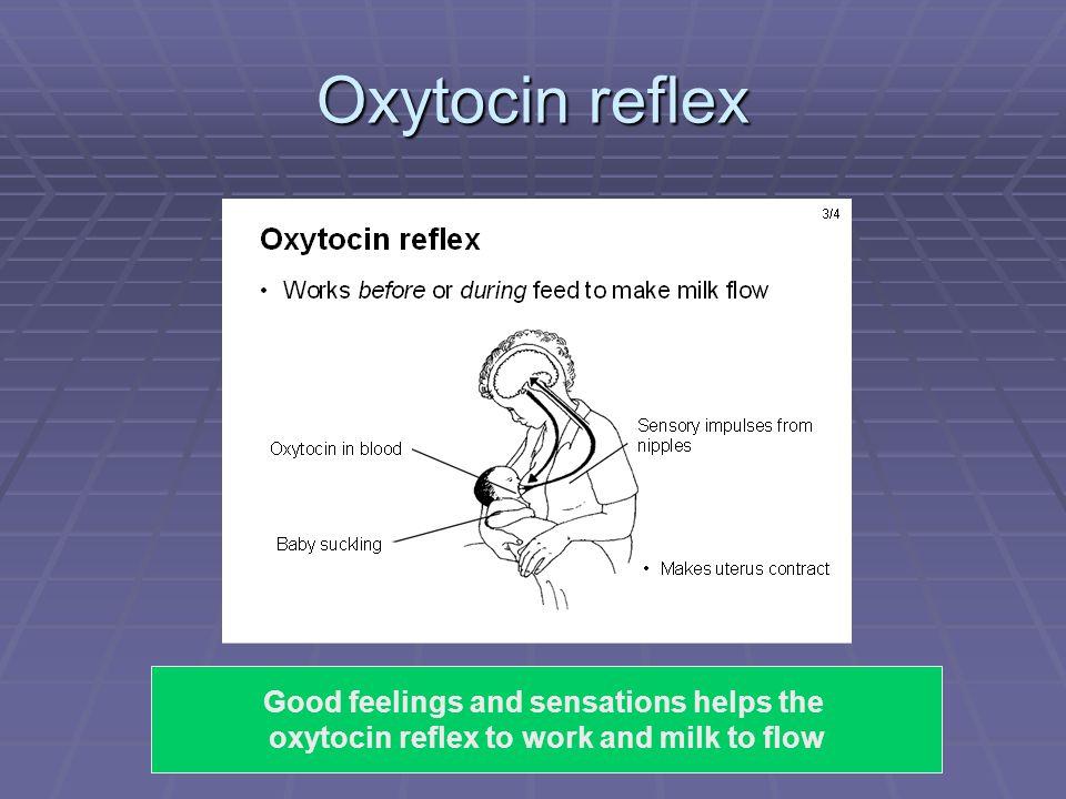 SF/2009 Oxytocin reflex Good feelings and sensations helps the oxytocin reflex to work and milk to flow