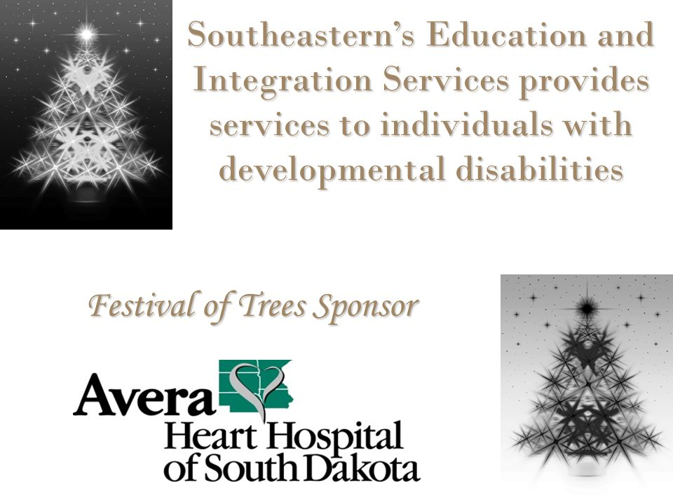 Festival of Trees Sponsor Southeastern's Education and Integration Services provides services to individuals with developmental disabilities