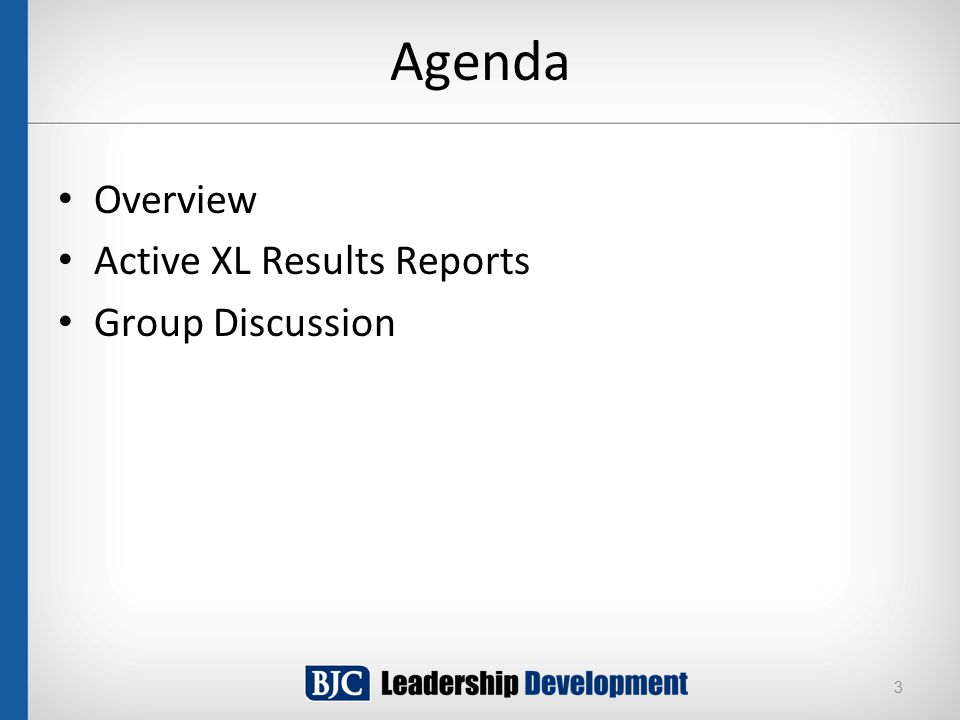 Agenda Overview Active XL Results Reports Group Discussion 3