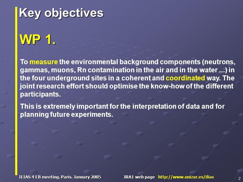 ILIAS 4 EB meeting. Paris. January 2005 JRA1 web page http://www.unizar.es/ilias 2 WP 1.