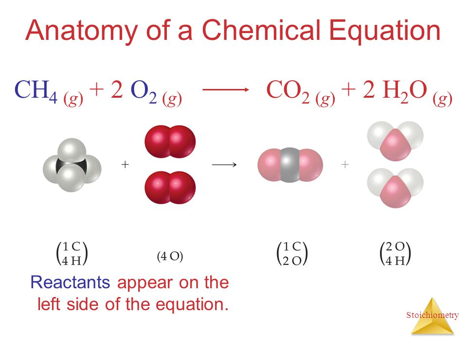 Stoichiometry Anatomy of a Chemical Equation Products appear on the right side of the equation.