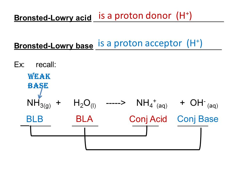 Bronsted-Lowry acid ______________________________ Bronsted-Lowry base _____________________________ Ex: recall: NH 3(g) + H 2 O (l) -----> NH 4 + (aq