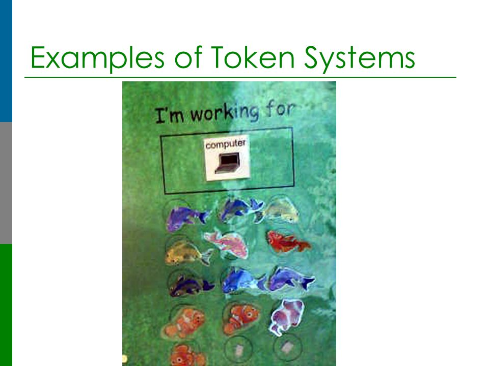 Examples of Token Systems