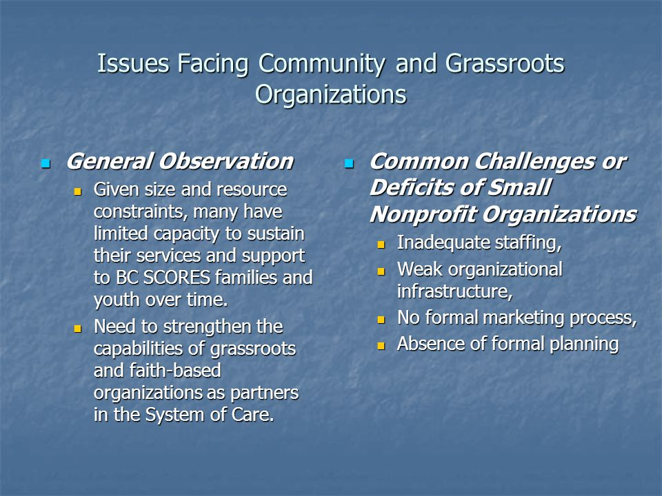 Issues Facing Community and Grassroots Organizations General Observation General Observation Given size and resource constraints, many have limited capacity to sustain their services and support to BC SCORES families and youth over time.