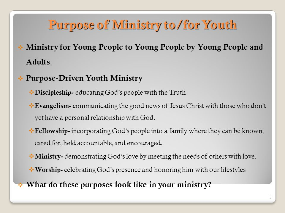 Purpose of Ministry to/for Youth  Ministry for Young People to Young People by Young People and Adults.  Purpose-Driven Youth Ministry  Discipleshi