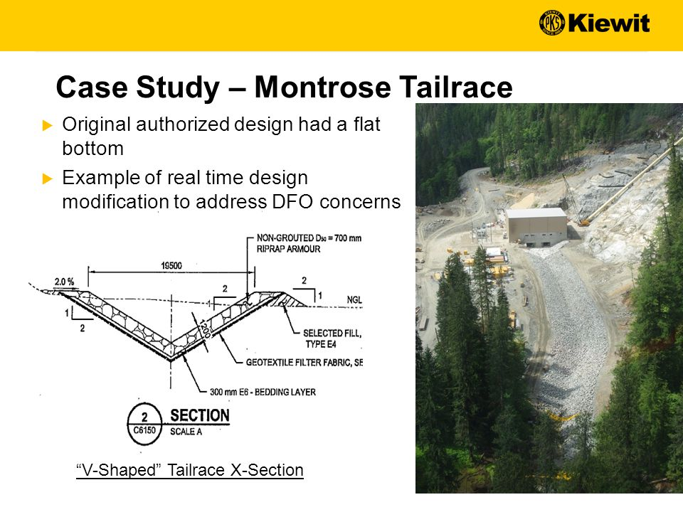 Case Study – Montrose Tailrace V-Shaped Tailrace X-Section  Original authorized design had a flat bottom  Example of real time design modification to address DFO concerns