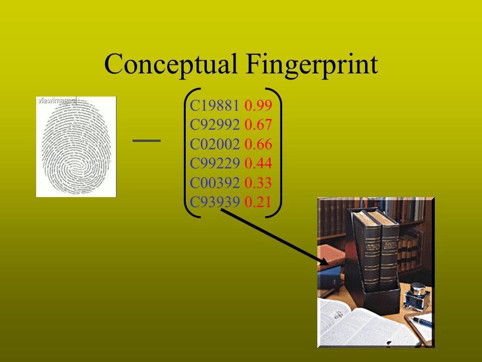 Conceptual Fingerprint C19881 0.99 C92992 0.67 C02002 0.66 C99229 0.44 C00392 0.33 C93939 0.21