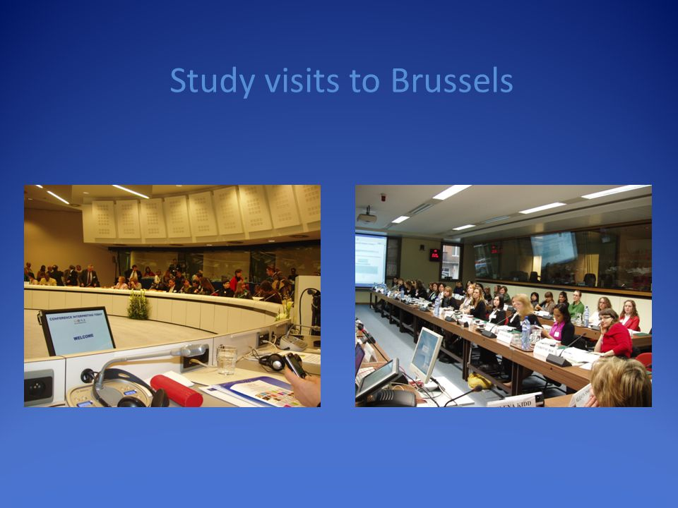 Study visits to Brussels