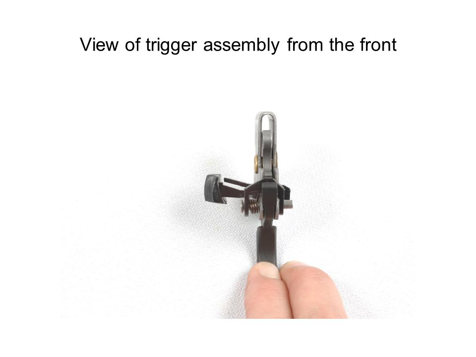 View of trigger assembly from the front