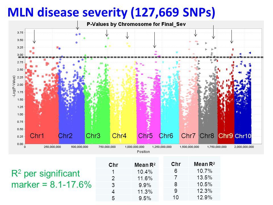 MLN disease severity (127,669 SNPs) Chr1 Chr2 Chr3 Chr4 Chr5 Chr6 Chr7 Chr8 Chr9 Chr10 ChrMean R 2 110.4% 211.6% 39.9% 411.3% 59.5% ChrMean R 2 610.7%
