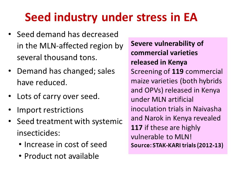 Seed industry under stress in EA Seed demand has decreased in the MLN-affected region by several thousand tons. Demand has changed; sales have reduced