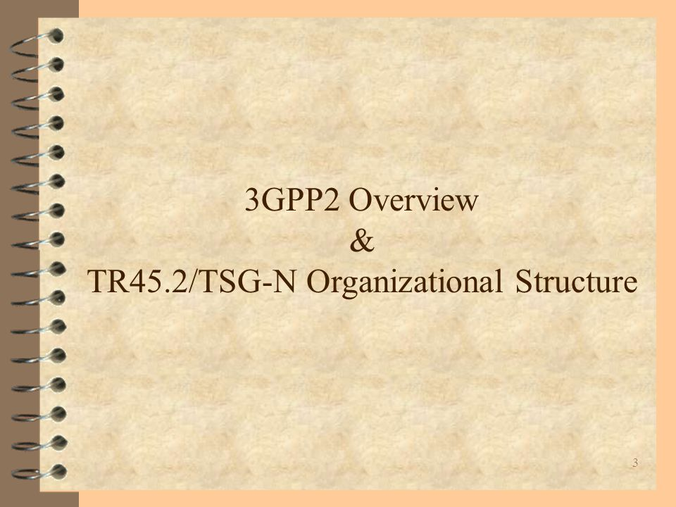 3 3GPP2 Overview & TR45.2/TSG-N Organizational Structure