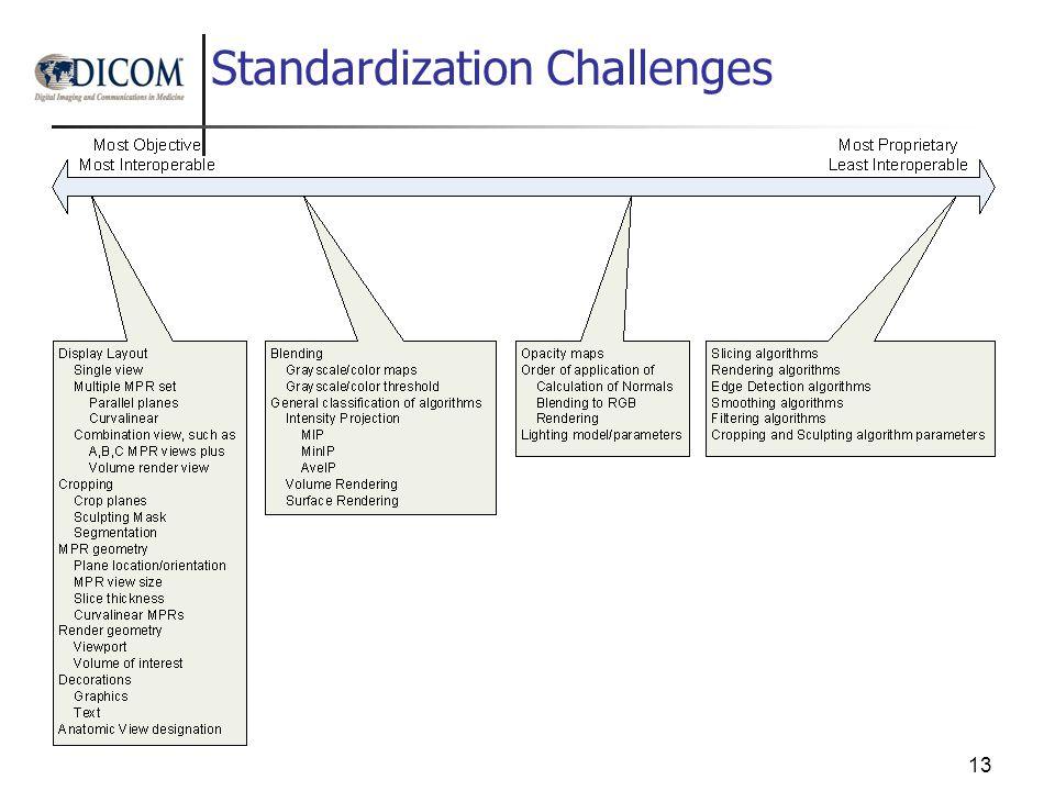 Standardization Challenges 13