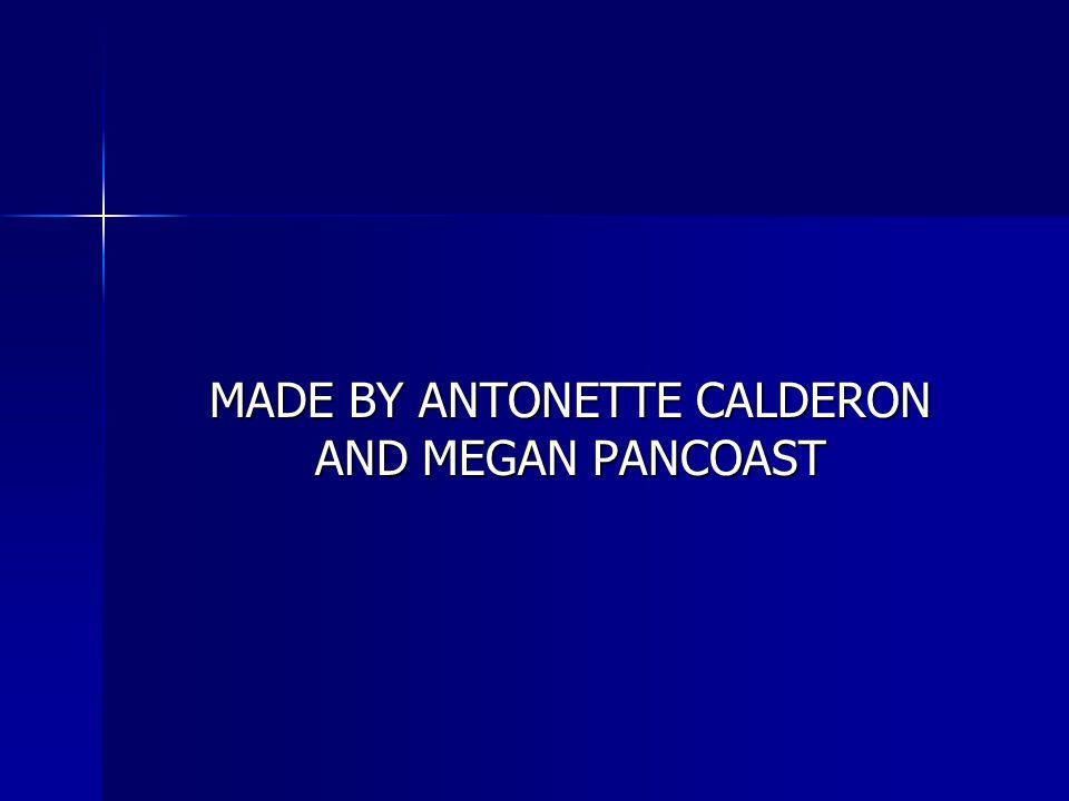 MADE BY ANTONETTE CALDERON AND MEGAN PANCOAST