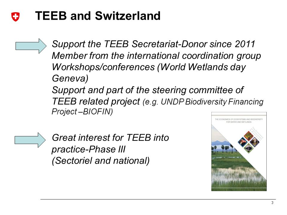 3 TEEB and Switzerland Great interest for TEEB into practice-Phase III (Sectoriel and national) Support the TEEB Secretariat-Donor since 2011 Member from the international coordination group Workshops/conferences (World Wetlands day Geneva) Support and part of the steering committee of TEEB related project (e.g.