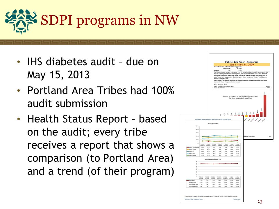 IHS diabetes audit – due on May 15, 2013 Portland Area Tribes had 100% audit submission Health Status Report – based on the audit; every tribe receives a report that shows a comparison (to Portland Area) and a trend (of their program) SDPI programs in NW 13