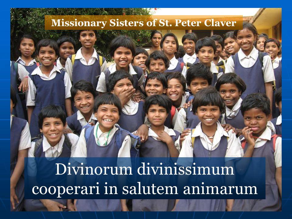 Divinorum divinissimum cooperari in salutem animarum Missionary Sisters of St. Peter Claver