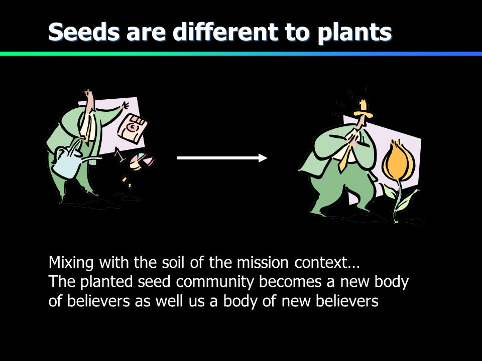 Seeds are different to plants Mixing with the soil of the mission context… The planted seed community becomes a new body of believers as well us a bod