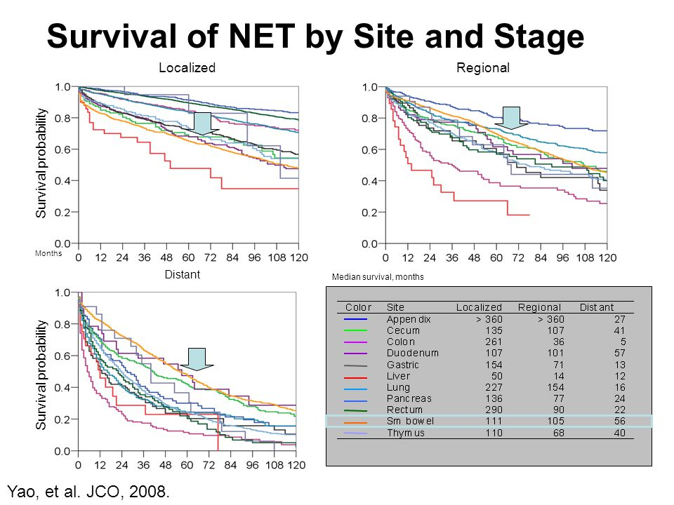 Survival probability LocalizedRegional Distant Months Survival probability Median survival, months Survival of NET by Site and Stage Yao, et al. JCO,