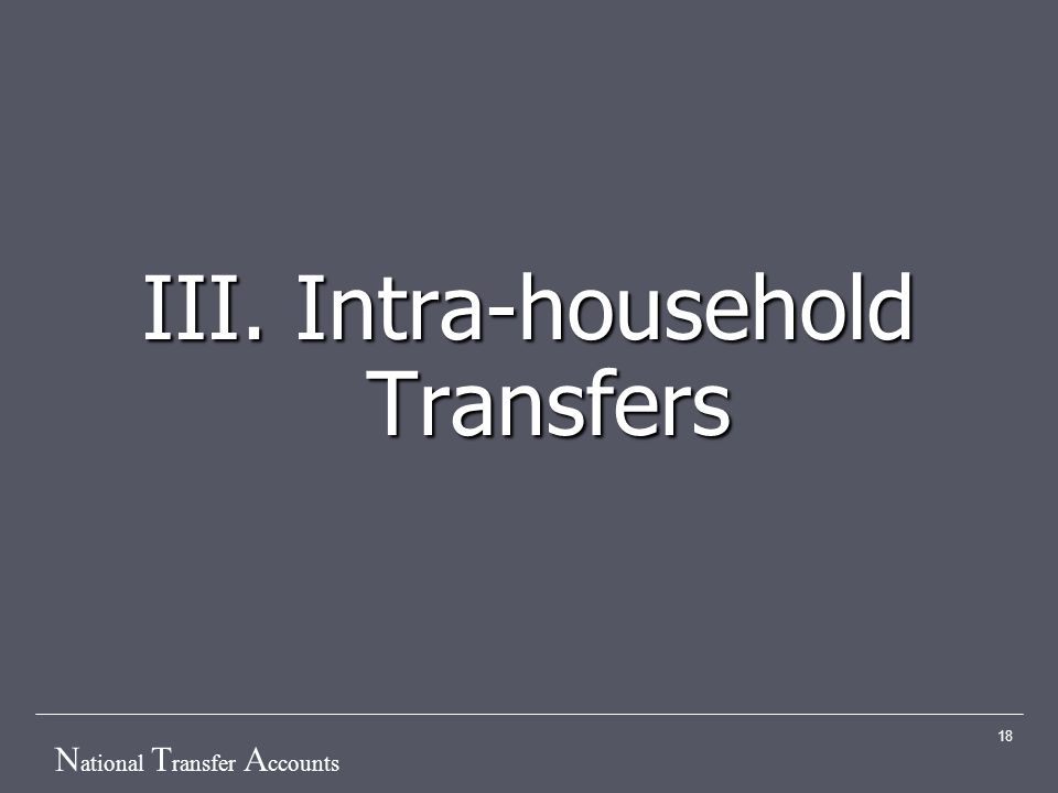 N ational T ransfer A ccounts 18 III. Intra-household Transfers