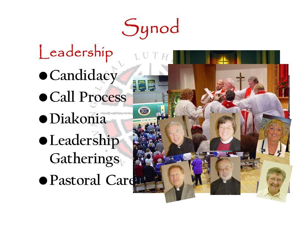 Synod Leadership Candidacy Call Process Diakonia Leadership Gatherings Pastoral Care