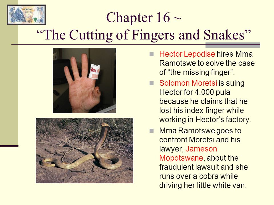 """Chapter 16 ~ """"The Cutting of Fingers and Snakes"""" Hector Lepodise hires Mma Ramotswe to solve the case of """"the missing finger"""". Solomon Moretsi is suin"""