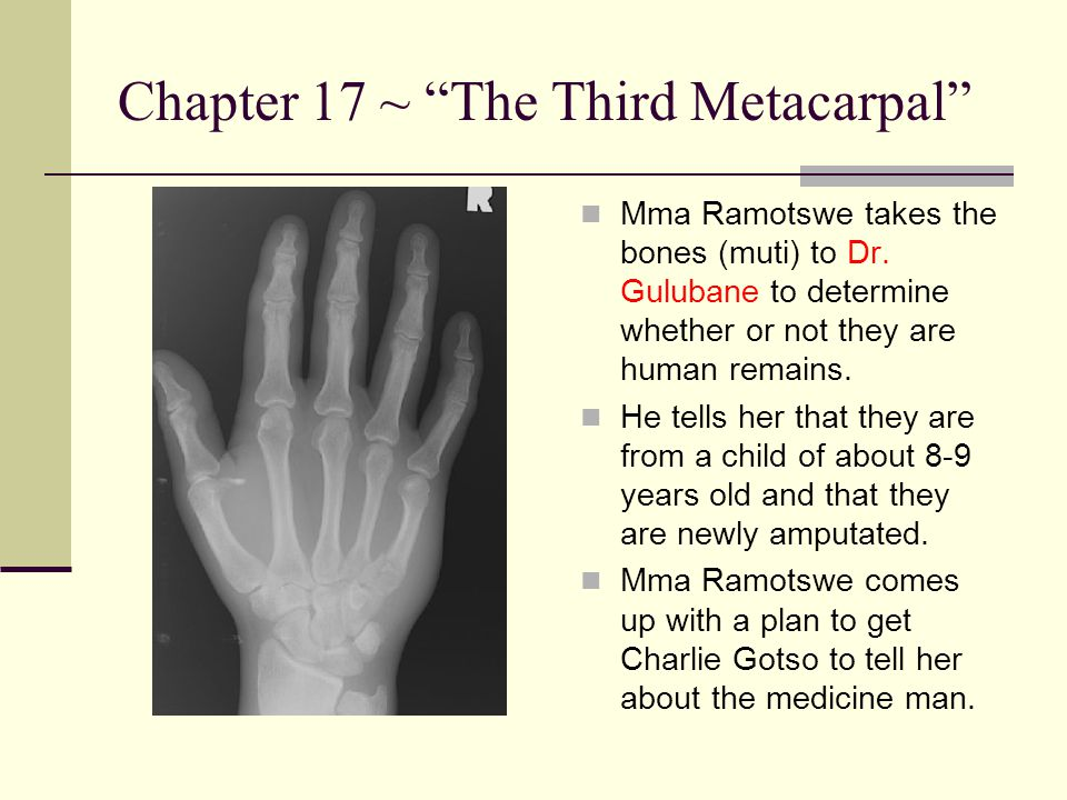 """Chapter 17 ~ """"The Third Metacarpal"""" Mma Ramotswe takes the bones (muti) to Dr. Gulubane to determine whether or not they are human remains. He tells h"""