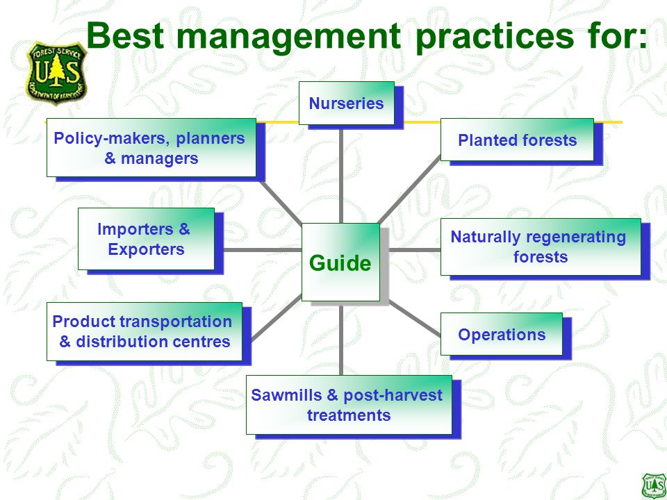 Best management practices for: Guide NurseriesPlanted forests Naturally regenerating forests Operations Sawmills & post-harvest treatments Product tra