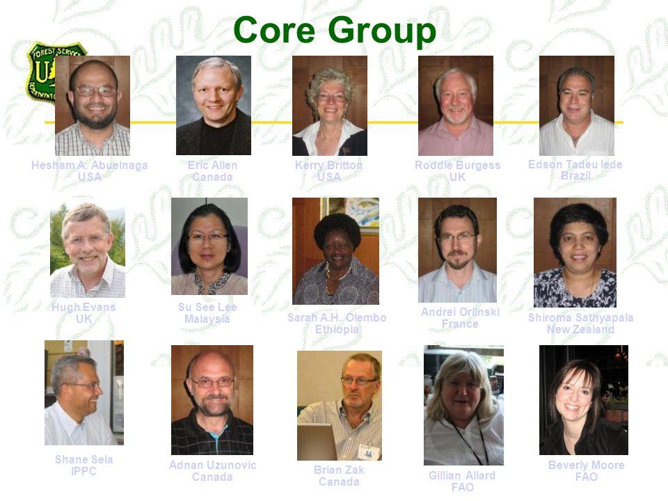 Core Group Hesham A.