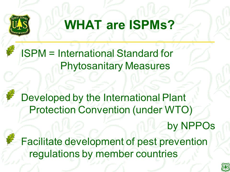 WHAT are ISPMs? ISPM = International Standard for Phytosanitary Measures Developed by the International Plant Protection Convention (under WTO) by NPP
