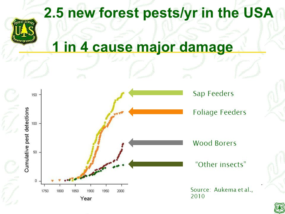 2.5 new forest pests/yr in the USA 1 in 4 cause major damage Sap Feeders Foliage Feeders Wood Borers Other insects Source: Aukema et al., 2010