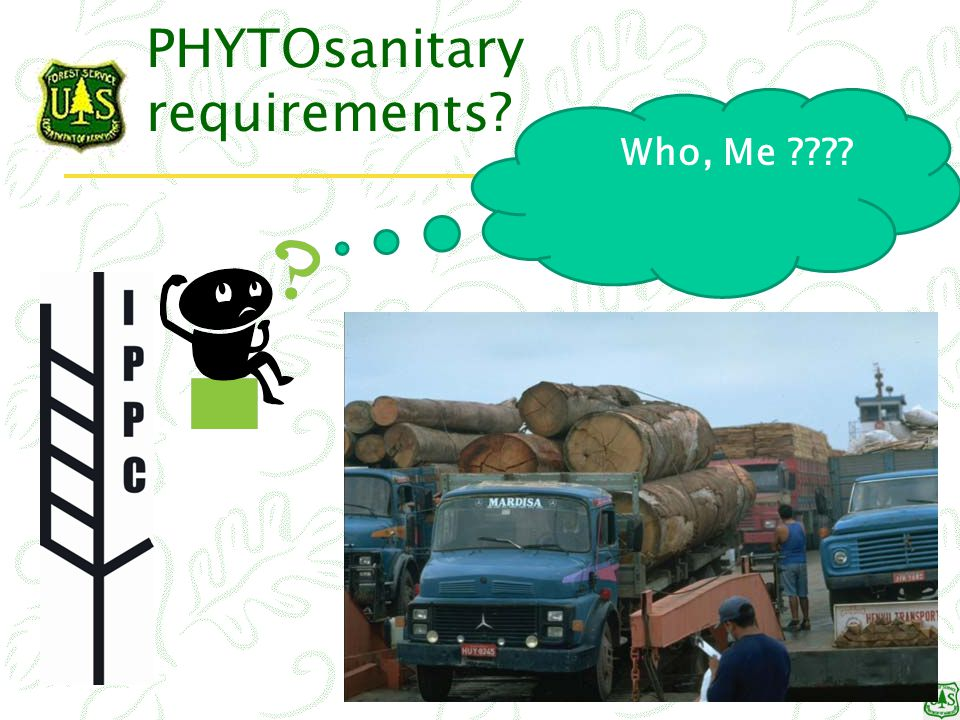 PHYTOsanitary requirements Who, Me