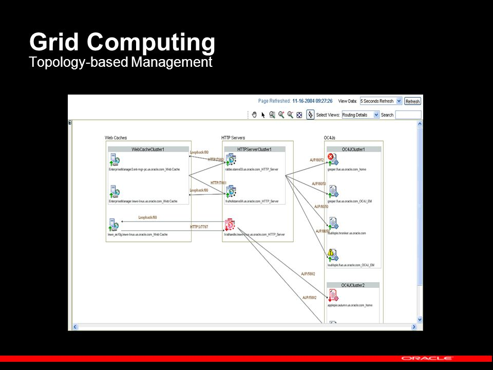 Grid Computing Topology-based Management