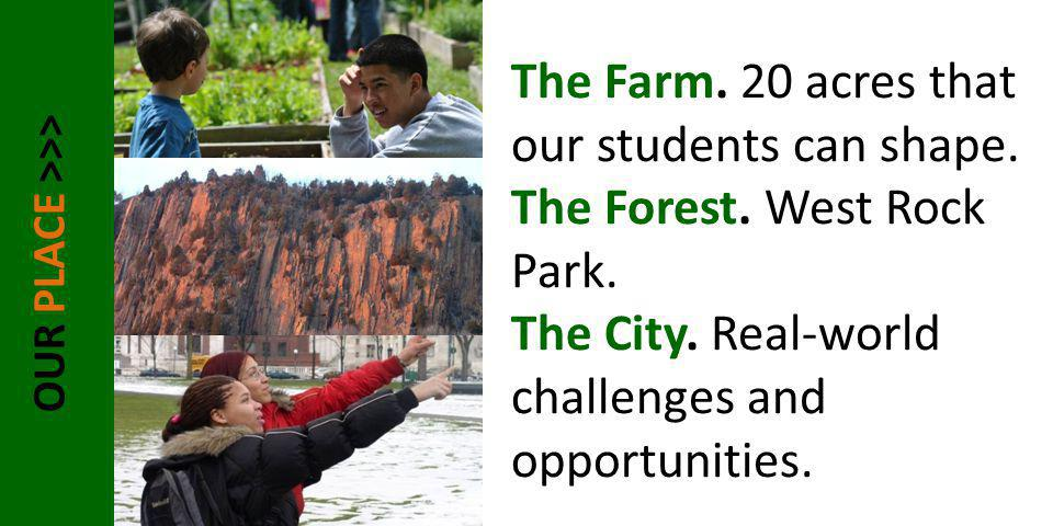 OUR PLACE >>> The Farm. 20 acres that our students can shape. The Forest. West Rock Park. The City. Real-world challenges and opportunities.