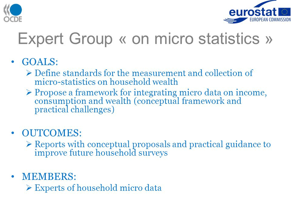 Expert Group « on micro statistics » GOALS:  Define standards for the measurement and collection of micro-statistics on household wealth  Propose a framework for integrating micro data on income, consumption and wealth (conceptual framework and practical challenges) OUTCOMES:  Reports with conceptual proposals and practical guidance to improve future household surveys MEMBERS:  Experts of household micro data