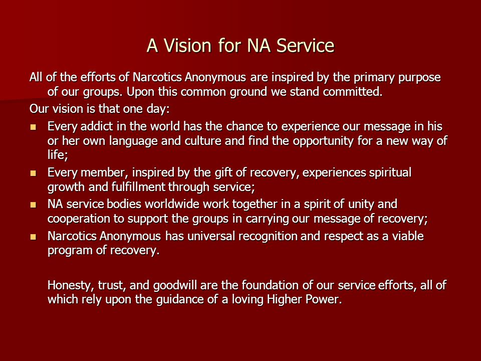 A Vision for NA Service All of the efforts of Narcotics Anonymous are inspired by the primary purpose of our groups.
