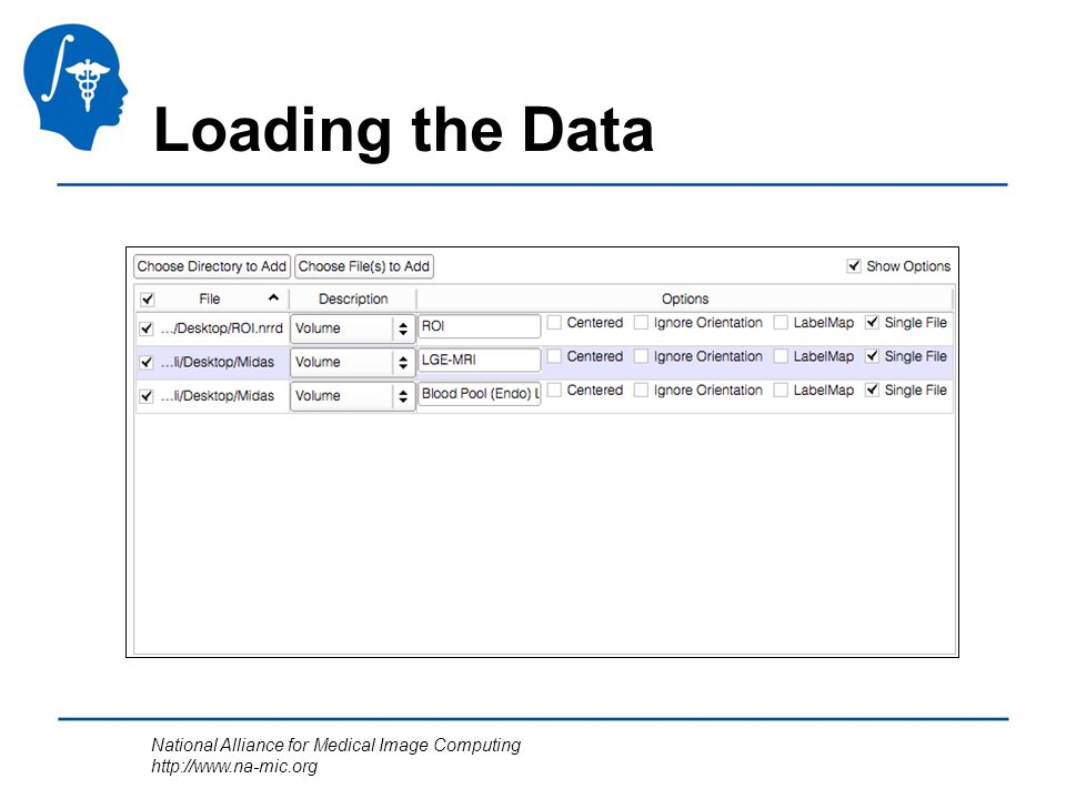 National Alliance for Medical Image Computing http://www.na-mic.org Loading the Data