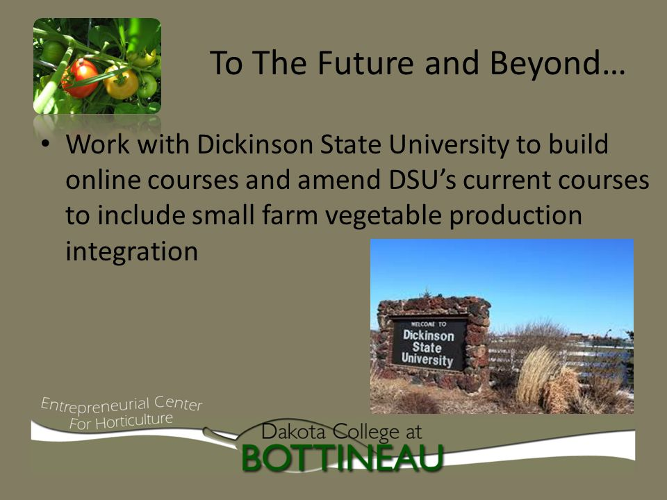 To The Future and Beyond… Work with Dickinson State University to build online courses and amend DSU's current courses to include small farm vegetable production integration