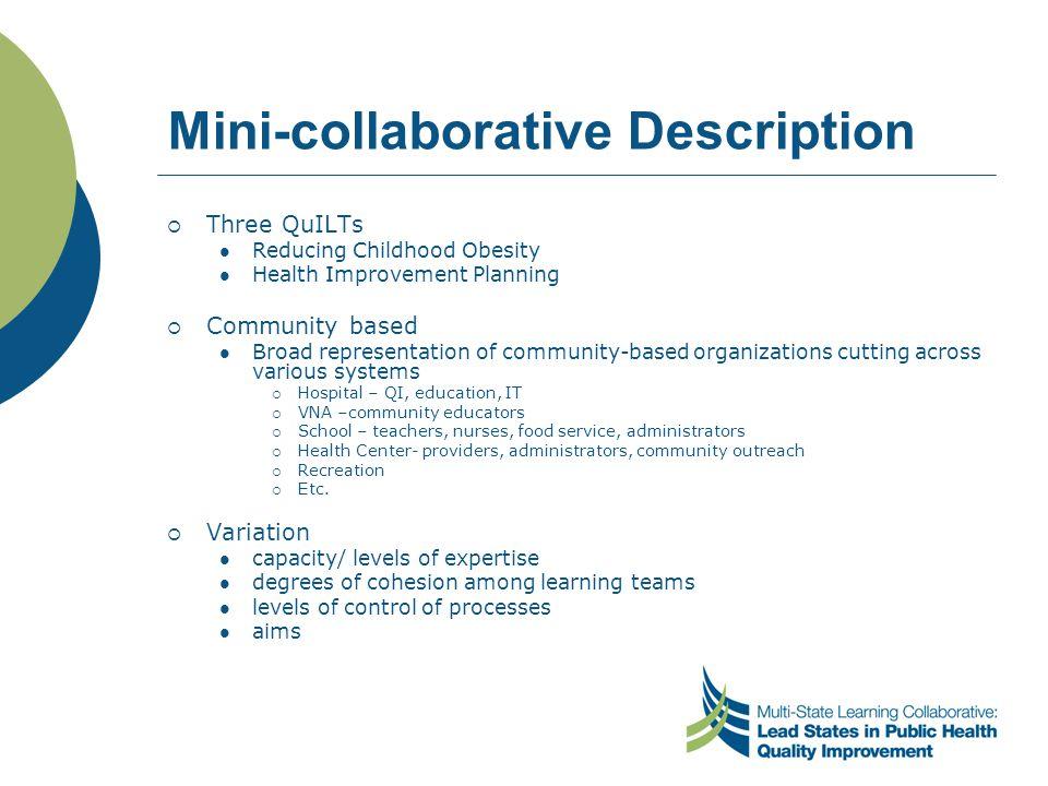 Mini-collaborative Description  Three QuILTs Reducing Childhood Obesity Health Improvement Planning  Community based Broad representation of communi
