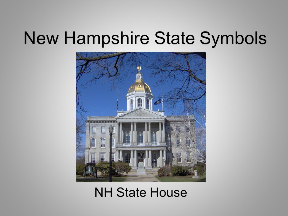 New Hampshire Flag Can you guess why there are nine stars around the state seal?