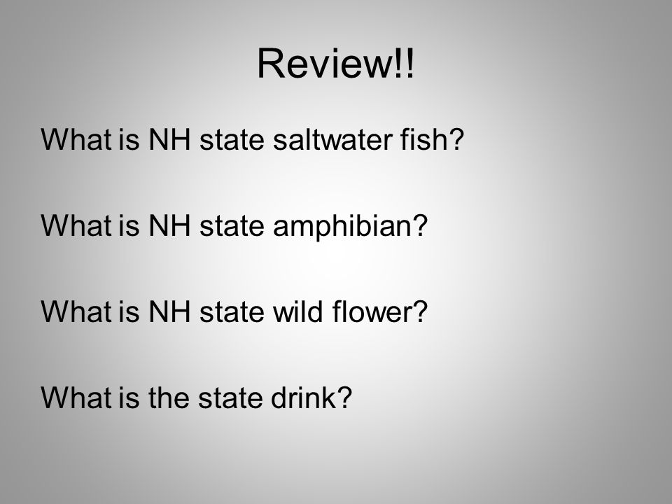 Review!. What is NH state saltwater fish. What is NH state amphibian.