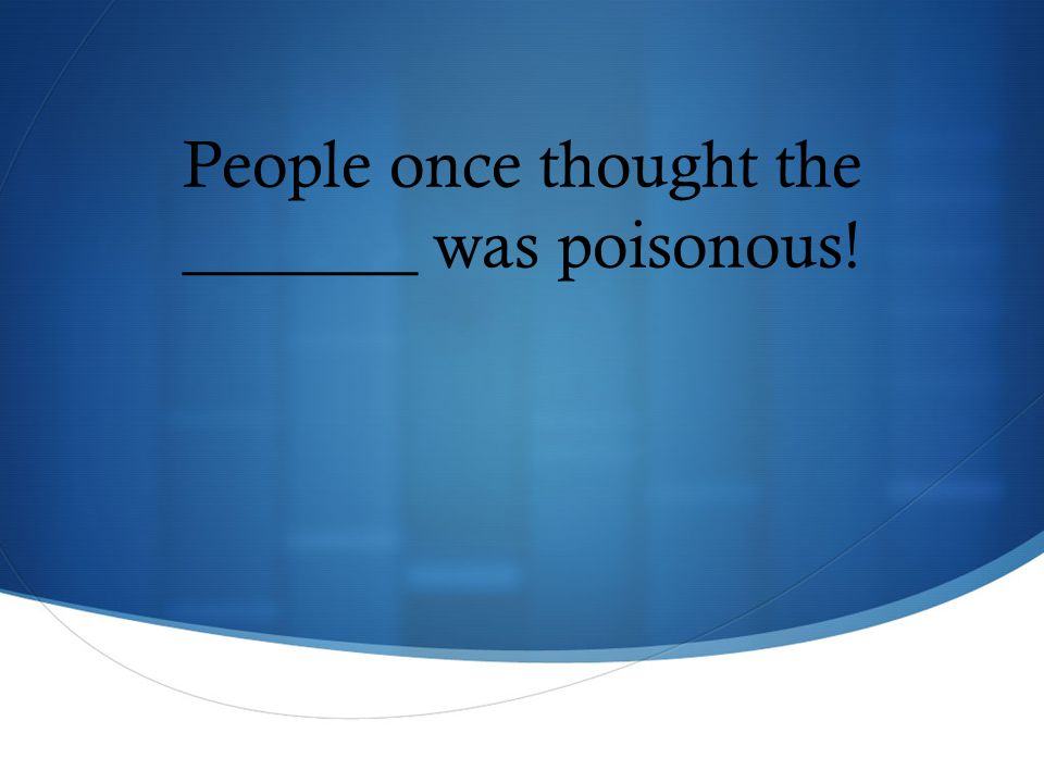 People once thought the _______ was poisonous!