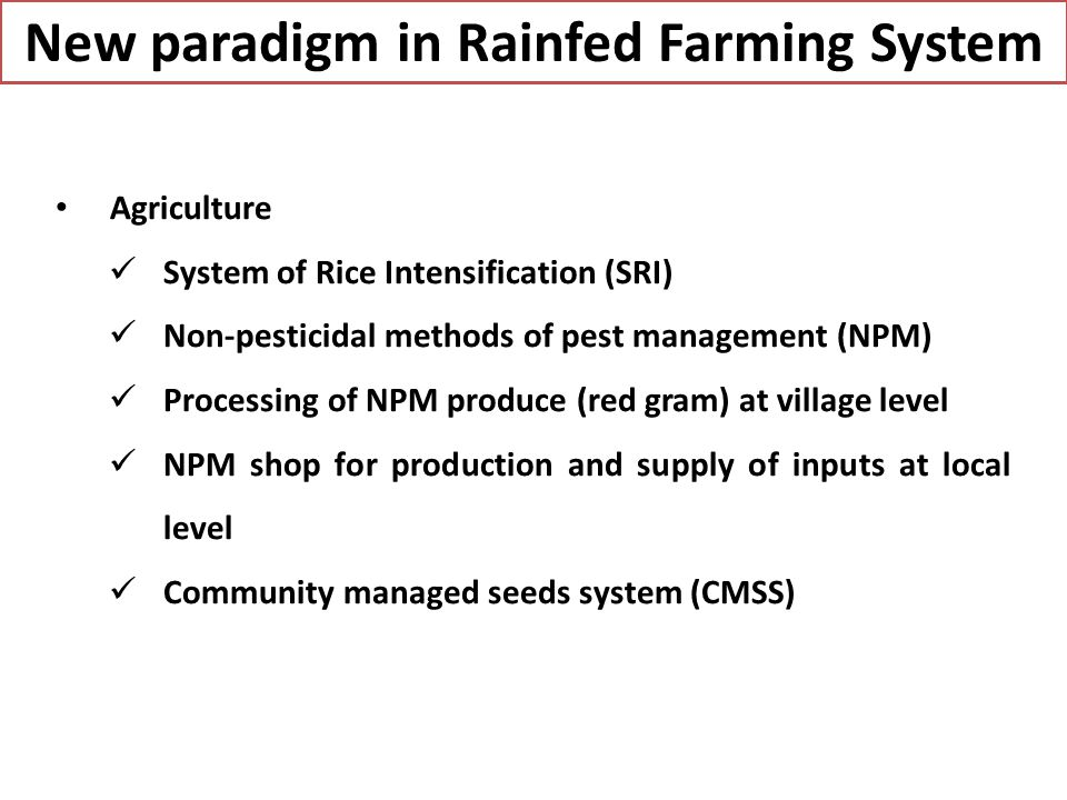 New paradigm in Rainfed Farming System Agriculture System of Rice Intensification (SRI) Non-pesticidal methods of pest management (NPM) Processing of NPM produce (red gram) at village level NPM shop for production and supply of inputs at local level Community managed seeds system (CMSS)