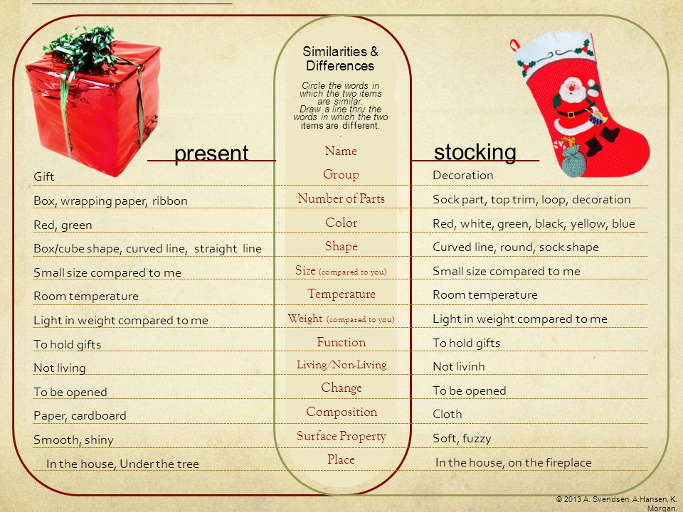 present stocking Name Group Number of Parts Color Shape Size (compared to you) Temperature Weight (compared to you) Function Living/Non-Living Change Composition Surface Property Place Similarities & Differences Circle the words in which the two items are similar.
