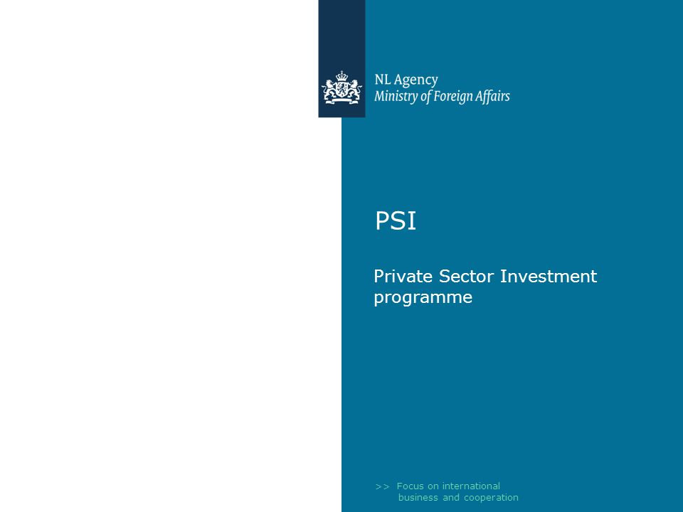 >> Focus on international business and cooperation PSI Private Sector Investment programme